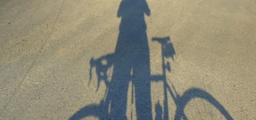 Sombra na BR 101 próximo a Balança de Garuva